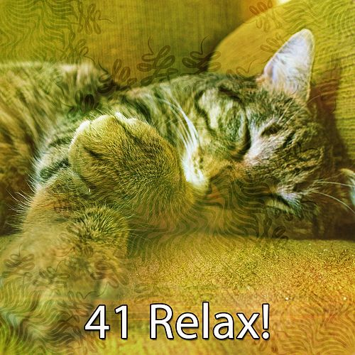 41 Relax! by Sounds Of Nature