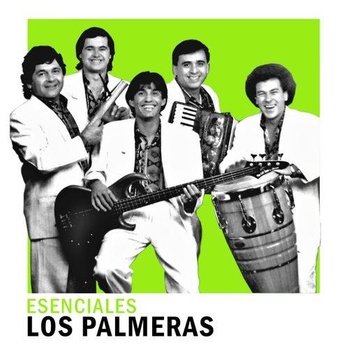 Esenciales de Los Palmeras