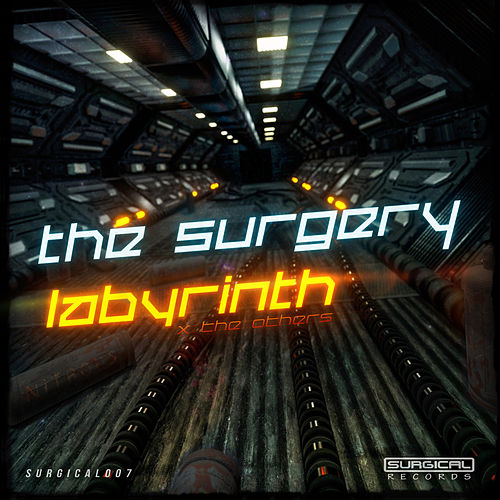 Labyrinth by The Surgery
