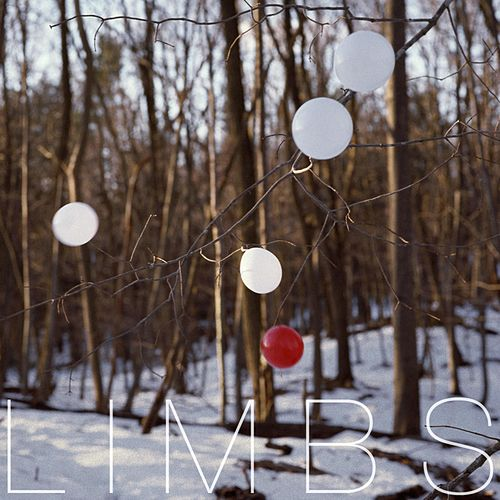Posthumous by Limbs