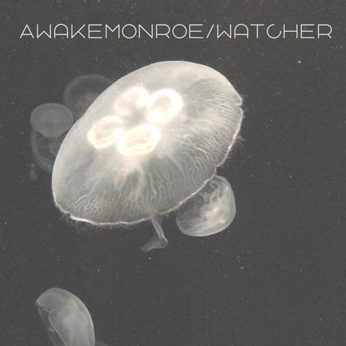 Awake Monroe / Watcher de Ryal