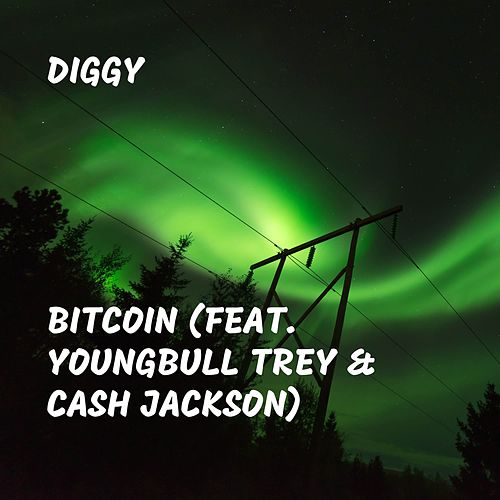 Bitcoin (feat. Youngbull Trey & Cash Jackson) by Diggy