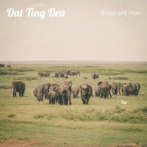 Dat Ting Dea von Elephant Man