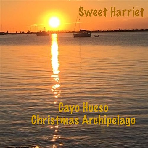 Cayo Hueso Christmas Archipelago by Sweet Harriet