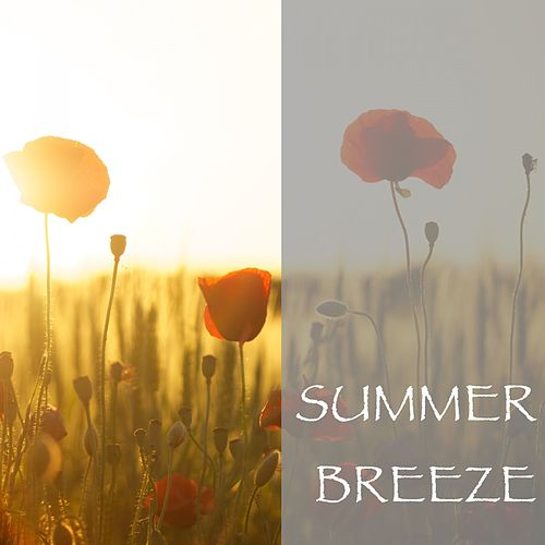 Summer Breeze by Nature Sounds (1)