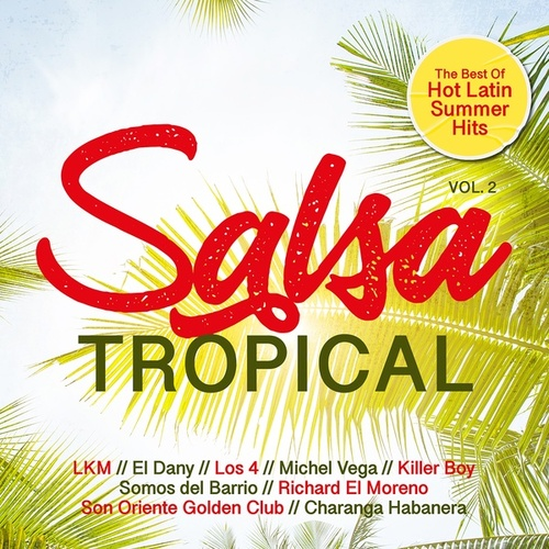 Salsa Tropical, Vol. 2 - Best of Hot Latin Summer Hits de Various Artists