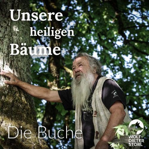 Unsere heiligen Bäume (Die Buche) von Wolf-Dieter Storl