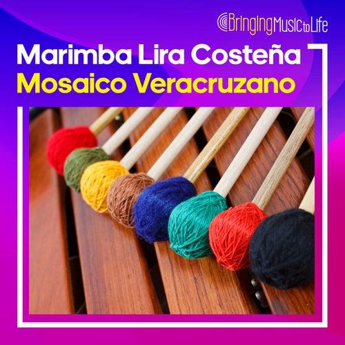 Mosaico Veracruzano by Marimba Lira Costeña