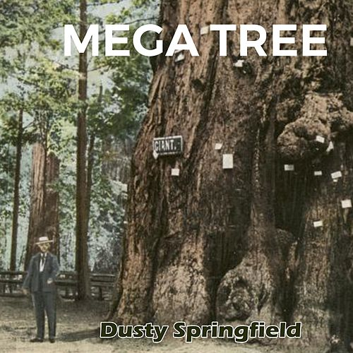 Mega Tree by Dusty Springfield