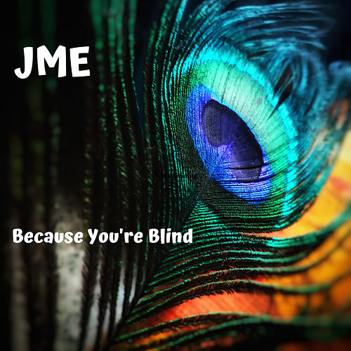 Because You're Blind di JME