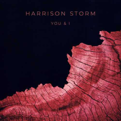 You & I by Harrison Storm