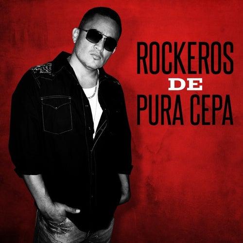 Rockeros de pura cepa de Various Artists