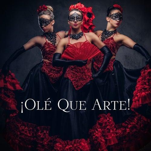 ¡Olé que arte! de Various Artists