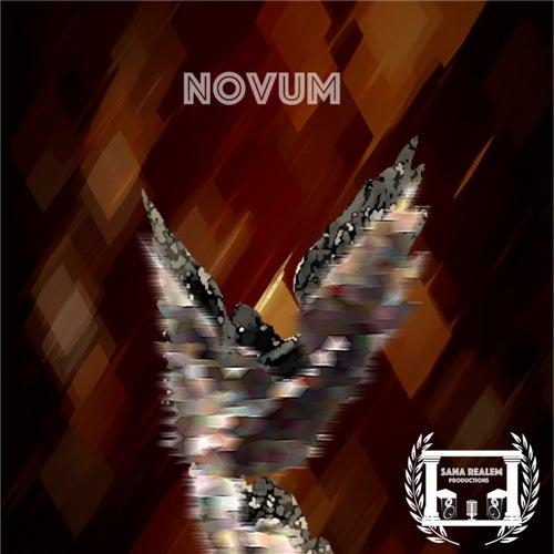 Novum de SanaRealem