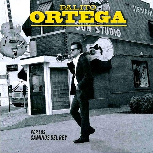 Por los Caminos del Rey de Palito Ortega