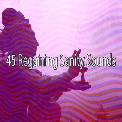 45 Regaining Sanity Sounds von Entspannungsmusik