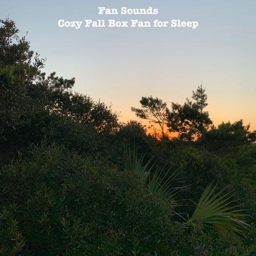 Cozy Fall Box Fan for Sleep by Fan Sounds