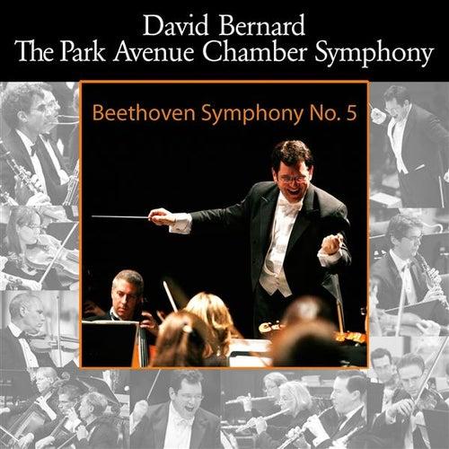 Beethoven: Symphony No. 5 von David Bernard