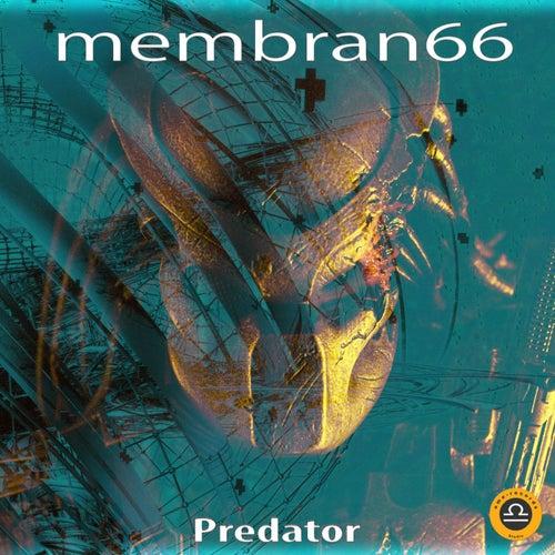 Predator von Membran 66