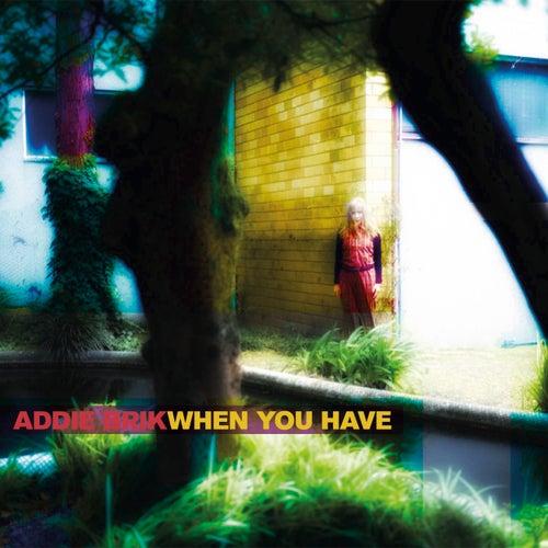 When You Have by Addie Brik
