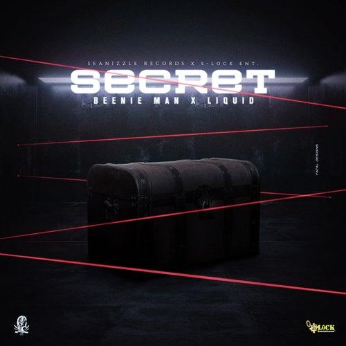 Secret de Beenie Man