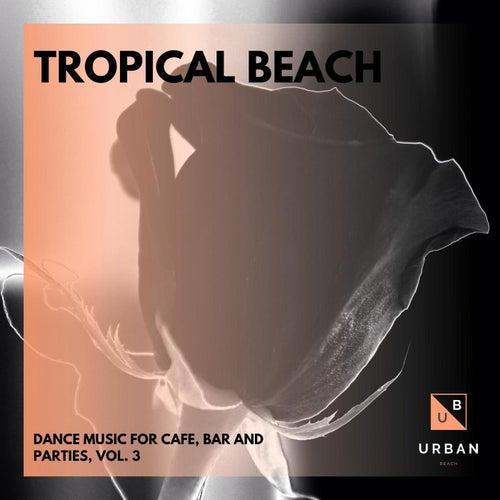 Tropical Beach - Dance Music For Cafe, Bar And Parties, Vol. 3 de Dixon