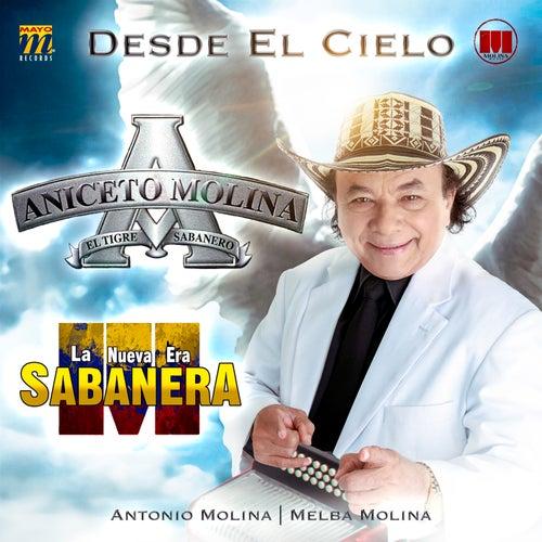 Desde el Cielo de Aniceto Molina