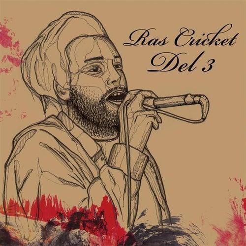 Del 3 by Ras Cricket