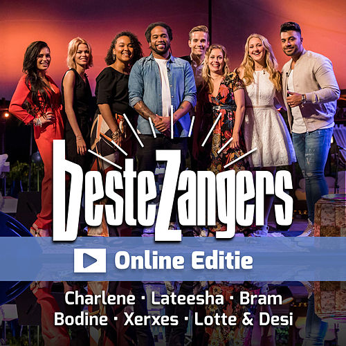 Beste Zangers Online Editie by Various Artists