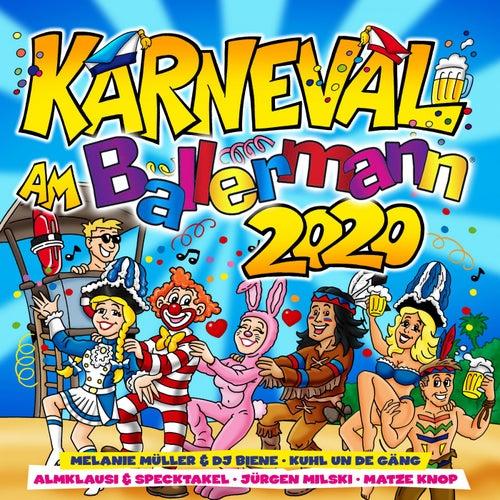 Karneval am Ballermann 2020 von Various Artists