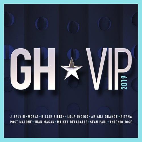 GH VIP 2019 de German Garcia