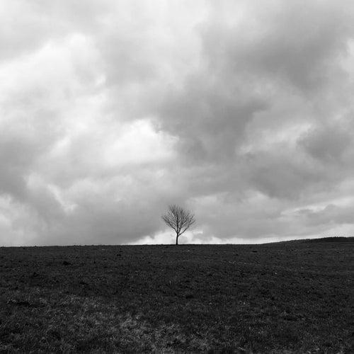 Solo Piano I (November) de Nick Draeger