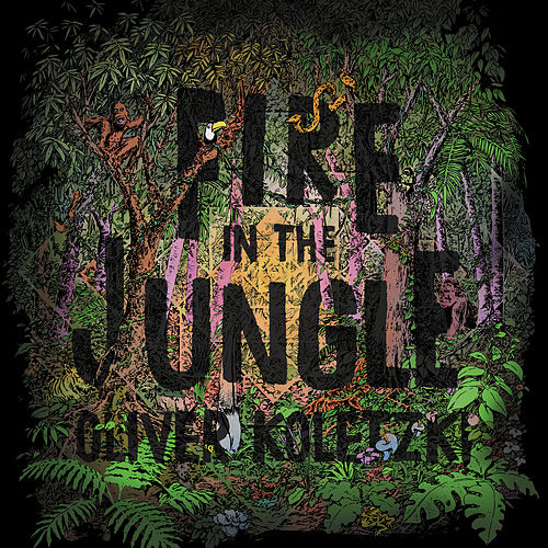 Fire in the Jungle by Oliver Koletzki