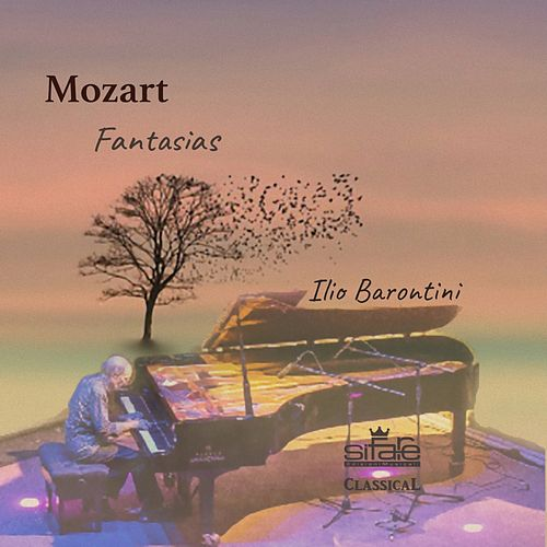 Mozart: Fantasias von Ilio Barontini