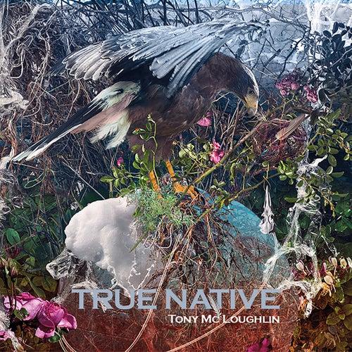 True Native by Tony McLoughlin