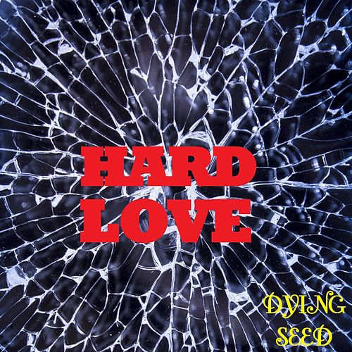 CoverAge: Hard Love von Dying Seed