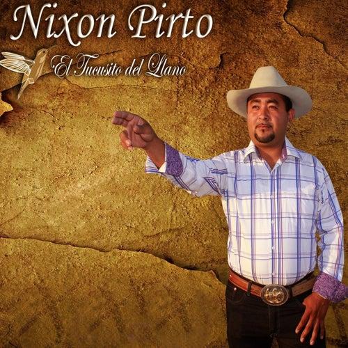 El Tucusito Del Llano by Nixon Pirto