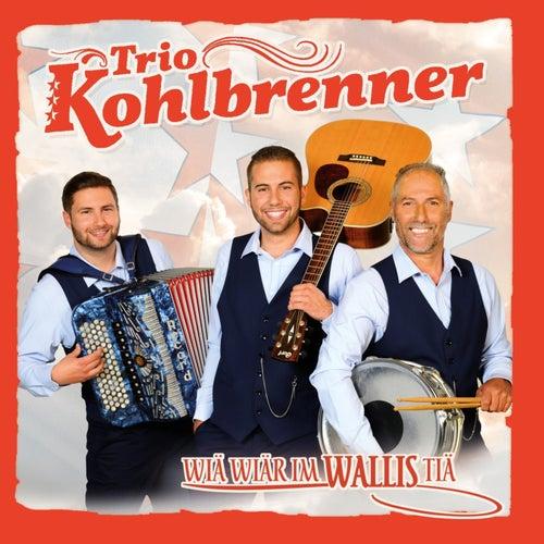 Wiä wiär im Wallis tiä von Trio Kohlbrenner