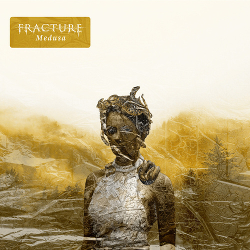 Medusa by Fracture