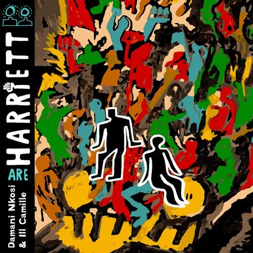 Harriett by Harriett