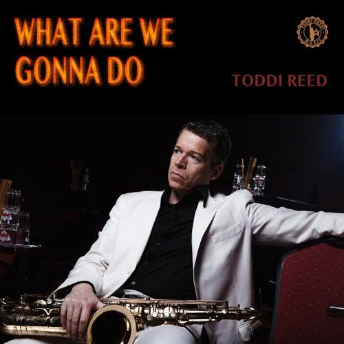 What Are We Gonna Do von Toddi Reed
