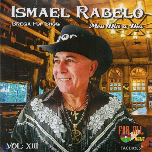 Meu Dia a Dia, Vol. XIII de Ismael Rabelo