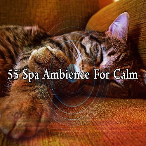 55 Spa Ambience for Calm de White Noise Babies