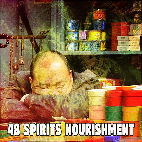 48 Spirits Nourishment by S.P.A