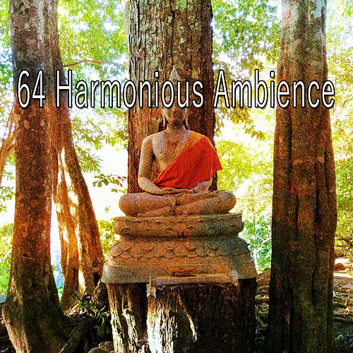 64 Harmonious Ambience by Relaxing Mindfulness Meditation Relaxation Maestro