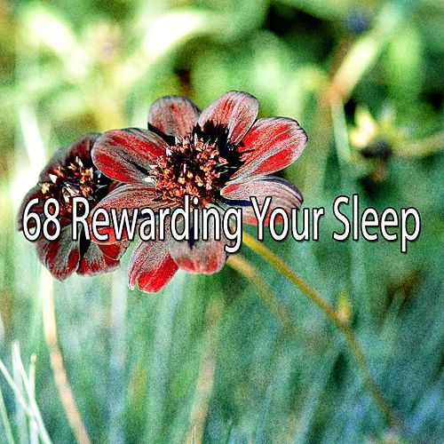 68 Rewarding Your Sleep von Best Relaxing SPA Music