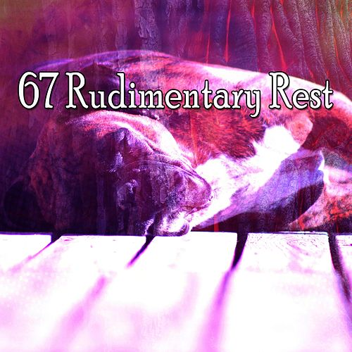 67 Rudimentary Rest de Smart Baby Lullaby