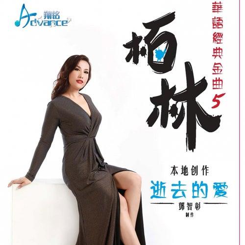 华语经典金曲 5 逝去的爱 (翻唱) de Ben Lim 柏林