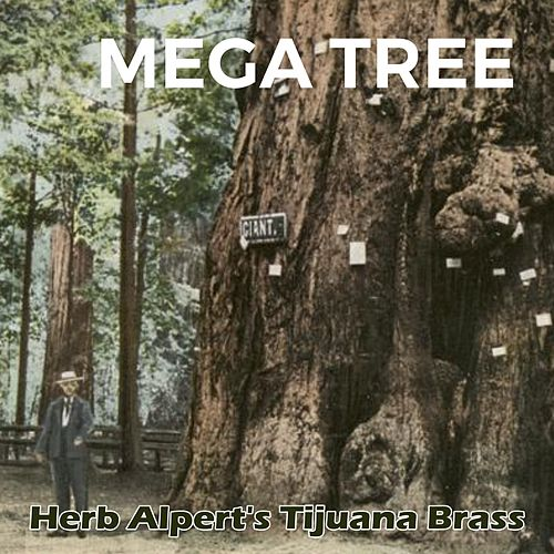 Mega Tree by Herb Alpert