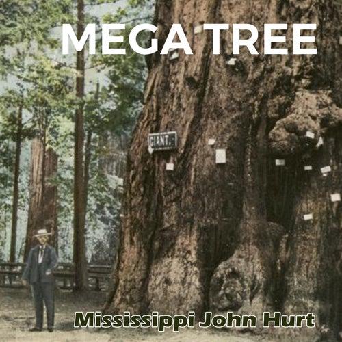 Mega Tree de Mississippi John Hurt